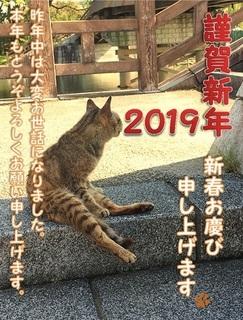 謹賀新年2019.jpg
